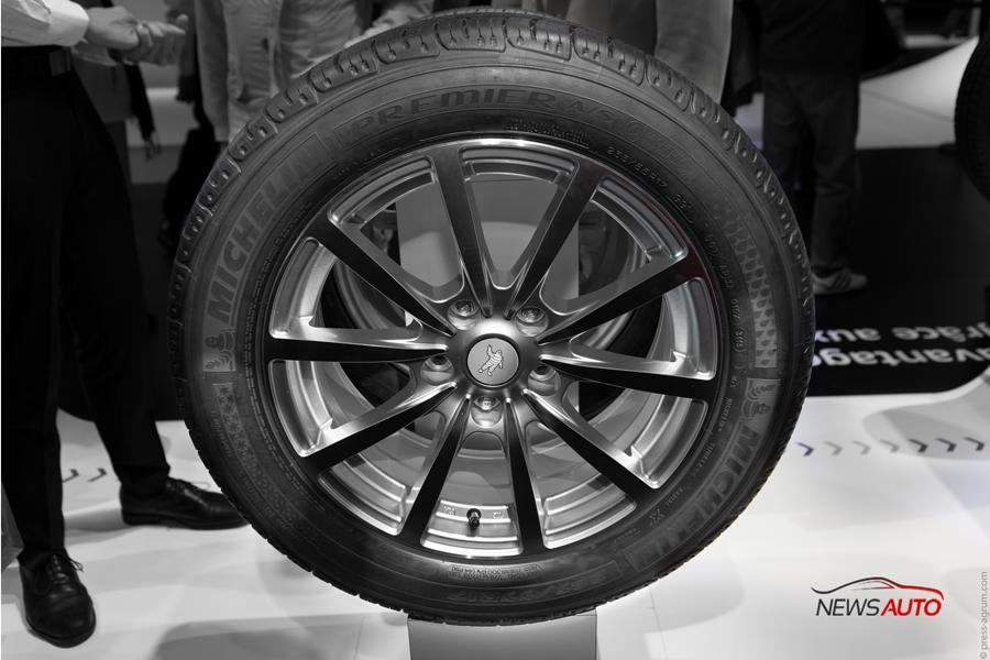 Michelin-mondial-2014-(06)